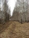 Паздерино - Нов.Деревенька