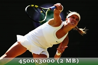 http://img-fotki.yandex.ru/get/9115/14186792.49/0_da419_78c397e3_orig.jpg