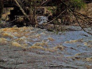 Воды у моста