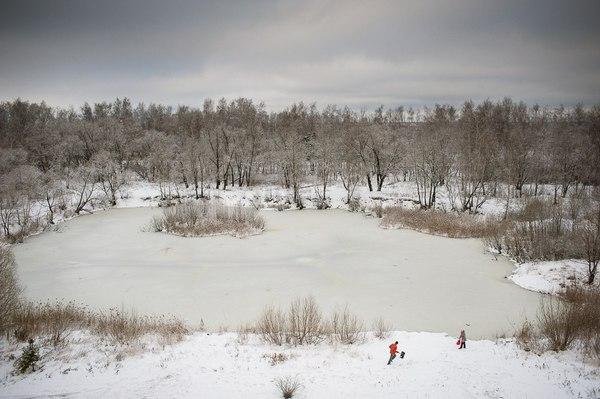 Один пруд, четыре сезона