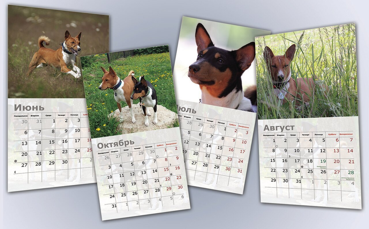 Календарь 2016.jpg