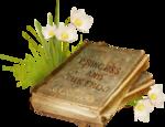 1FlyPixelSt_PrincessAndTheFrog_cl  (1).png