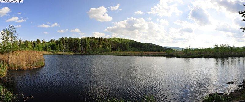 Мелкая рябь на воде (27.06.2013)