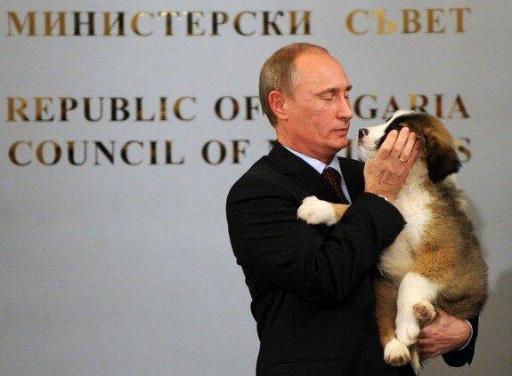 Фотографии Путина для сайта знакомств