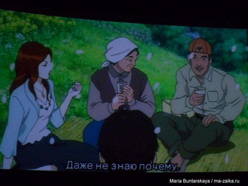 Кадры из фильма 'Волшебный лес Миёри', Саратов, 07 ноября 2015 года
