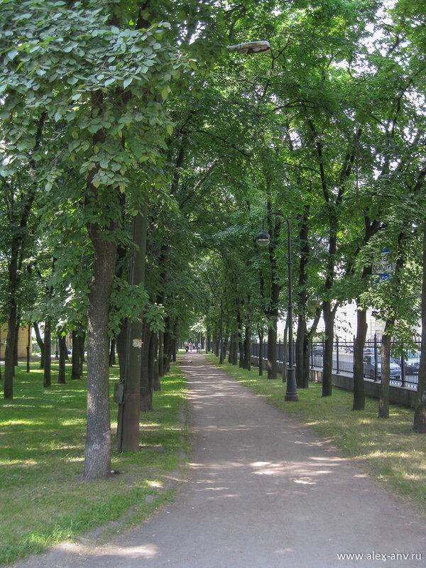 Московский парк Победы. Вошёл я в парк с северо-восточного угла. Аллея парка вдоль Кузнецовской улицы.