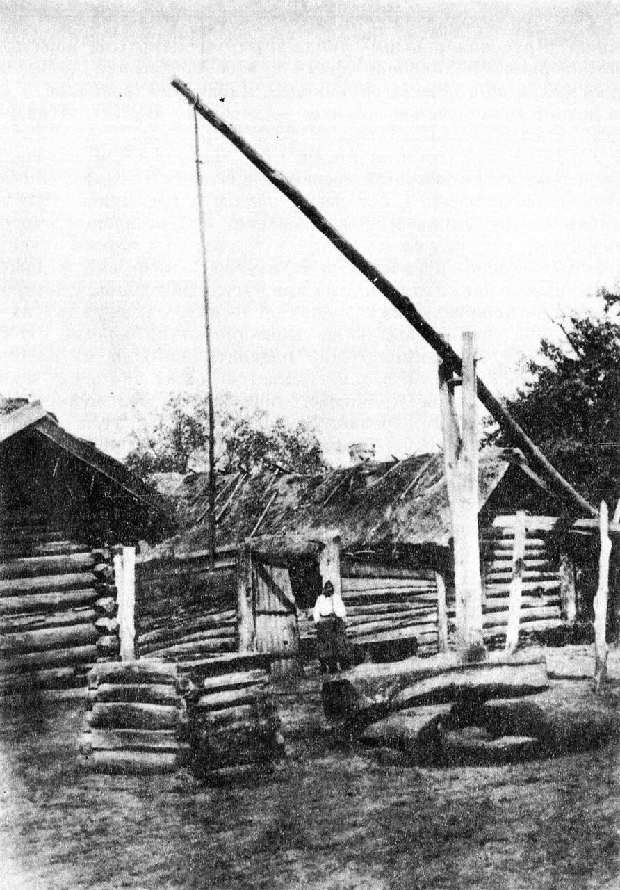 Белорусский колодец с журавлем. Могилевская губ., Гомельский уезд