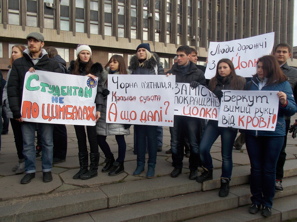 Запорожский Евромайдан: «Банду геть!», «Ода чму» и галочка против Януковича (ФОТОРЕПОРТАЖ), фото-3