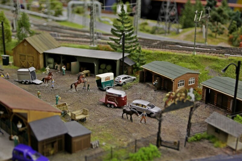 Гранд макет: конный клуб. Лошадей привезли на соревнование в специальных фургонах