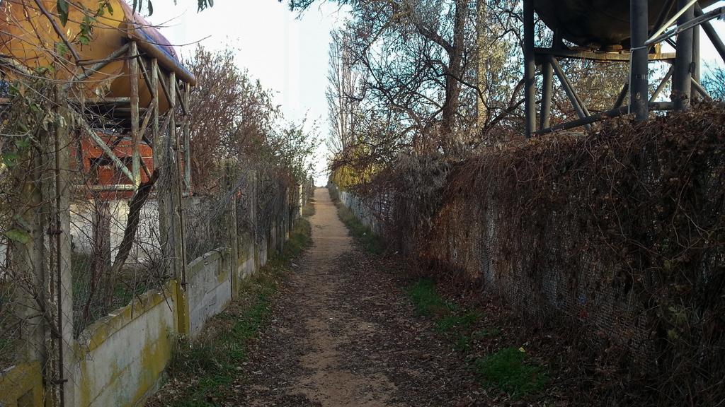 Голубицкая. Дорога к морю между турбазами.