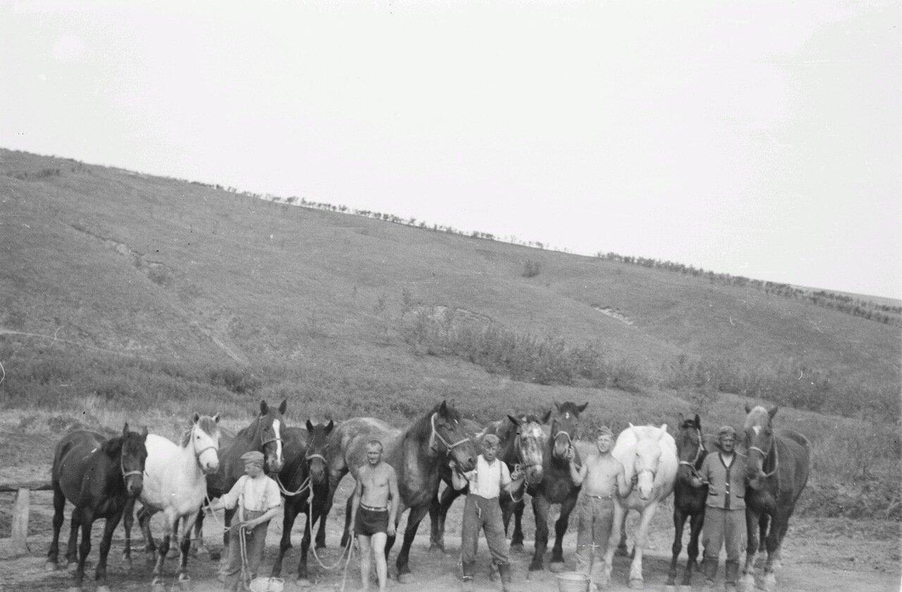 Белгородская область. Франц Грассер с товарищами