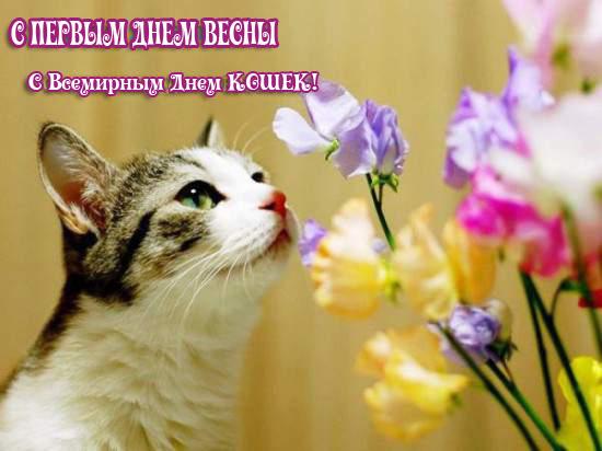 С первым днем весны открытки фото рисунки картинки поздравления