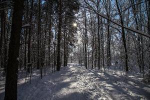 Зимняя тропа