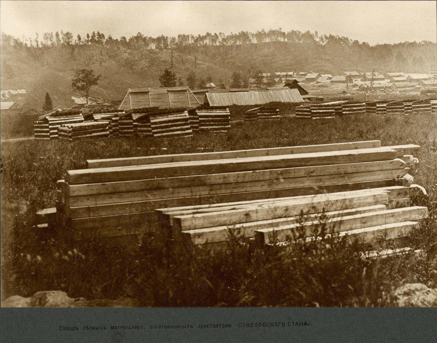 20 верста. Черняевская ветвь. Склад лесных материалов, заготовленных арестантами