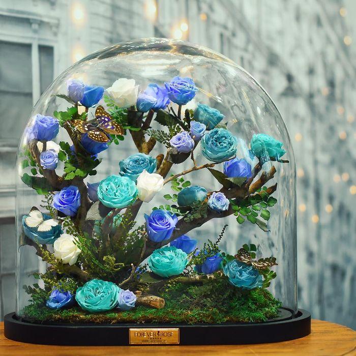 весна Красота креатив фотоподборка цветы