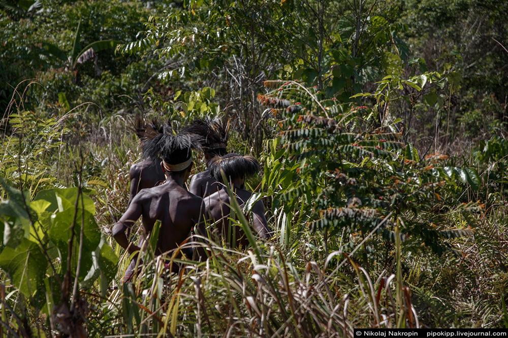 Второе путешествие в племя Файу. Логика.