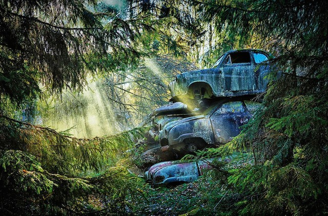 Car Graveyards Photography (20 pics)