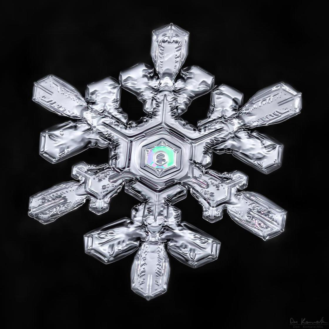 Sky Crystals – The fascinating beauty of snowflakes