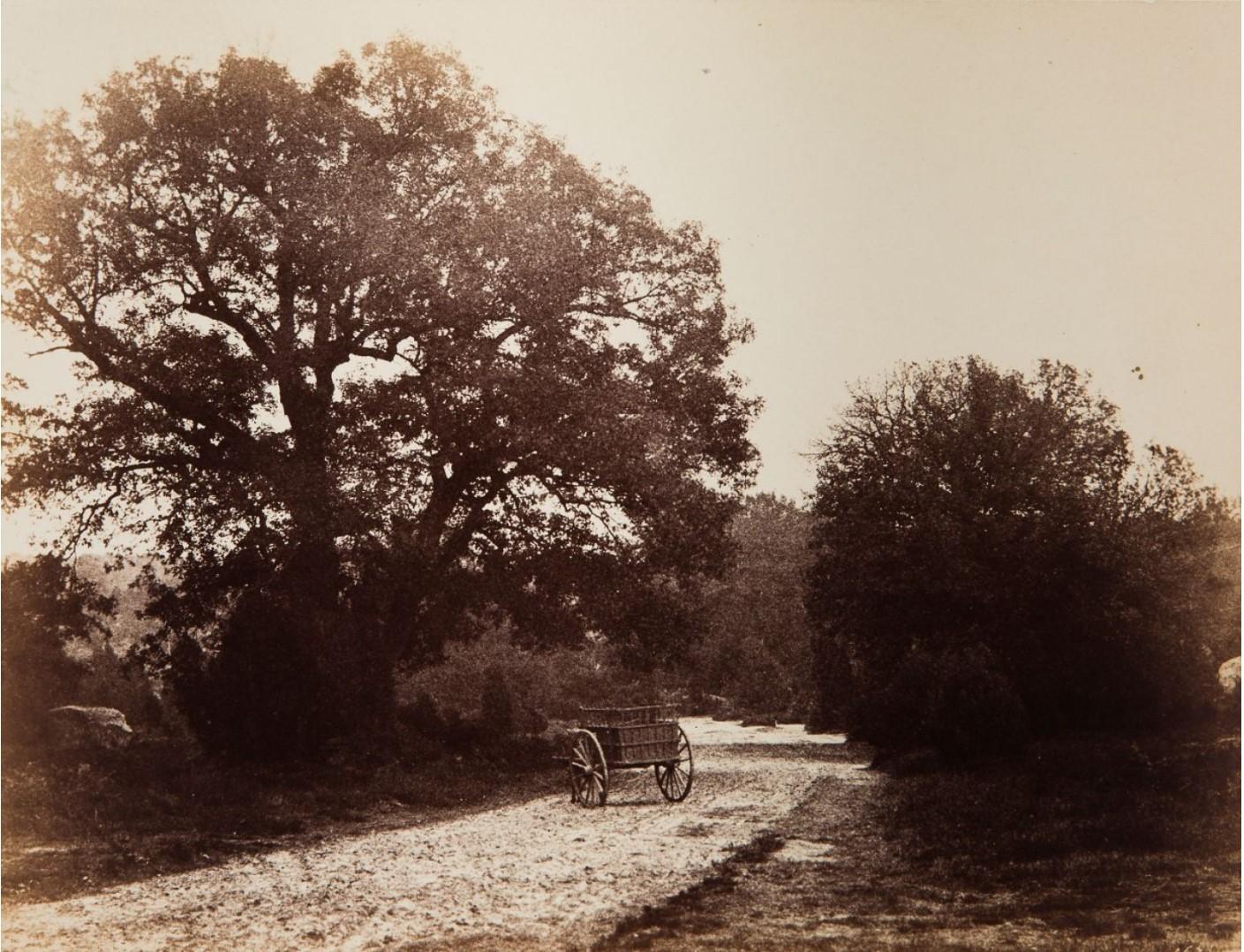 1862. Тележка на улице, октябрь