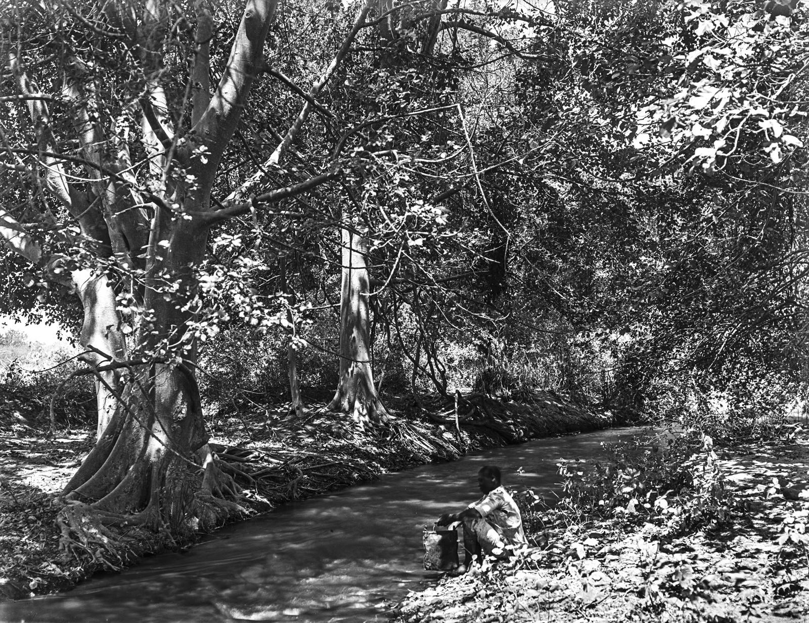 249. Абориген у ручья