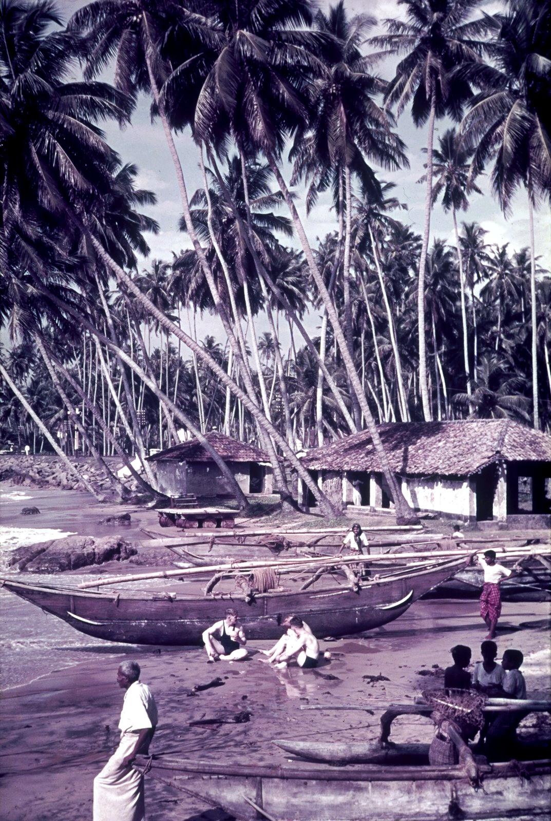 Гаити. Лодки на берегу под пальмами.
