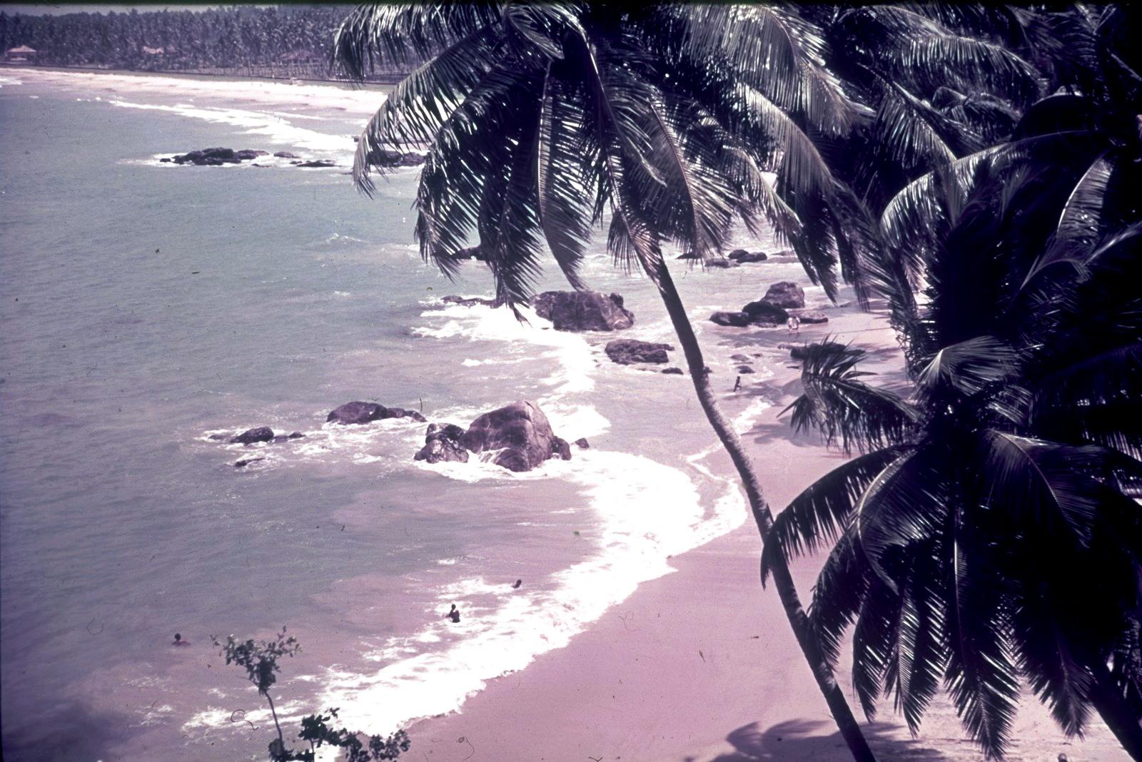 Гаити. Пляж с валунами  и пальмами