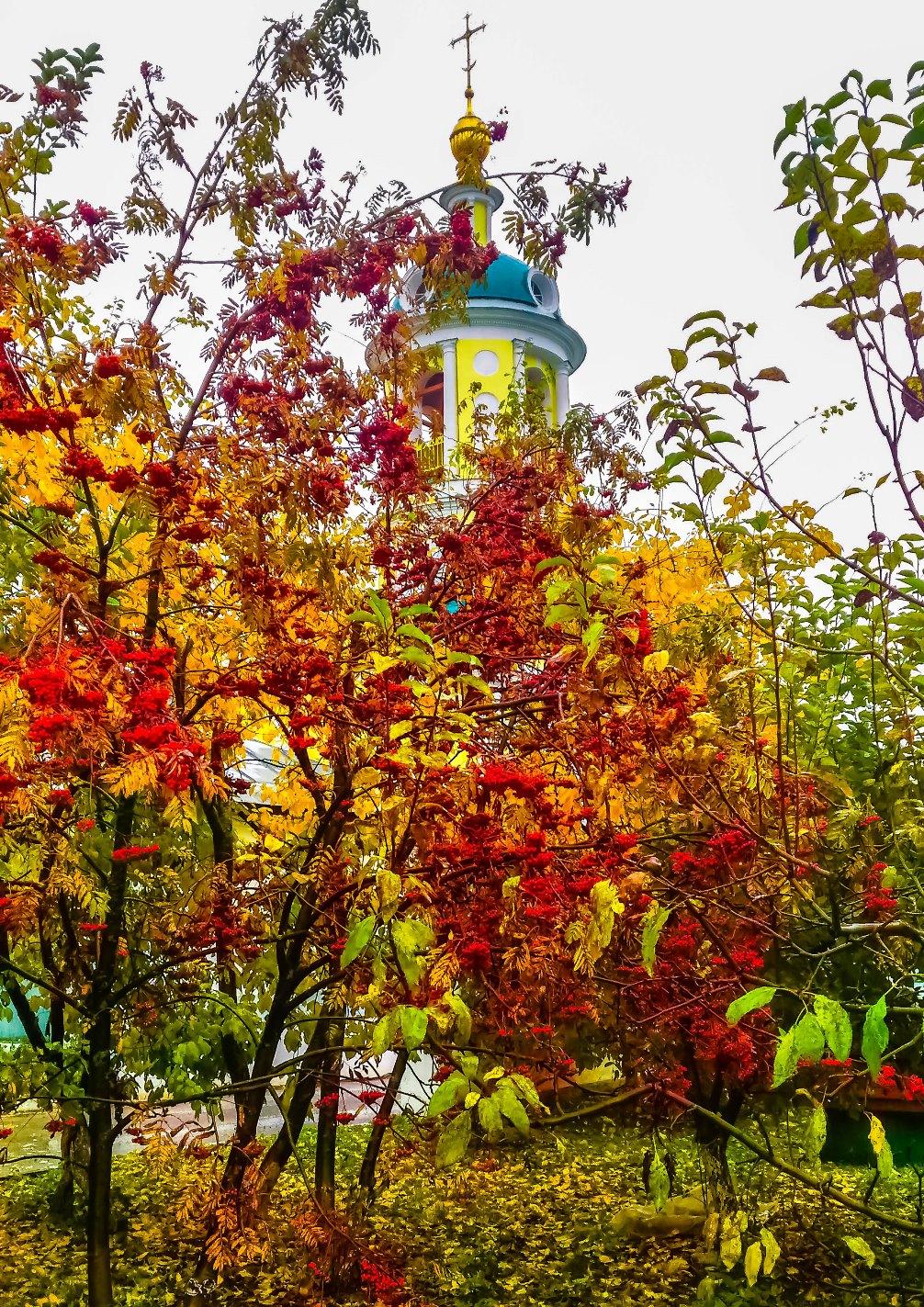 irina-fortuna-Catherine-Monastery 03.jpg