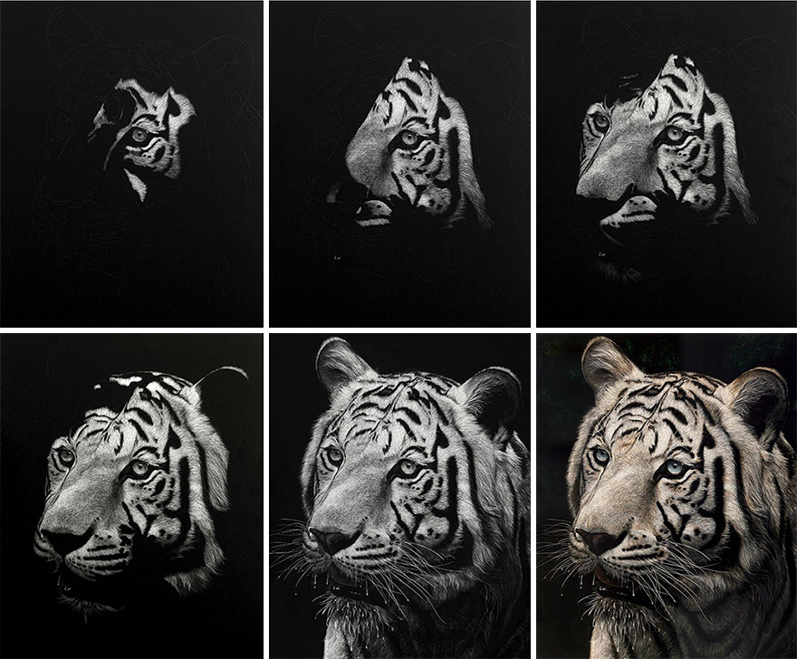 Starting-From-Scratch-The-Hyper-Realistic-Scratchboard-Art-of-Cathy-Sheeter-5a13ec335d488__880.jpg