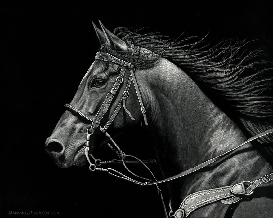Starting-From-Scratch-The-Hyper-Realistic-Scratchboard-Art-of-Cathy-Sheeter-5a1371e30a091__880.jpg