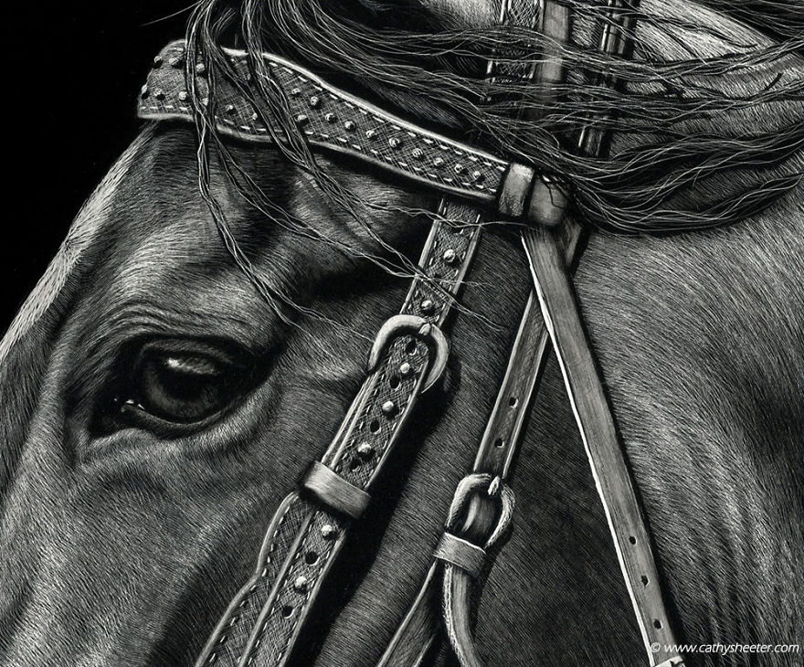 Starting-From-Scratch-The-Hyper-Realistic-Scratchboard-Art-of-Cathy-Sheeter-5a1372b3f0cd9__880.jpg
