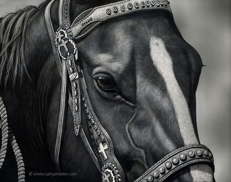 Starting-From-Scratch-The-Hyper-Realistic-Scratchboard-Art-of-Cathy-Sheeter-5a137750b32c1__880.jpg
