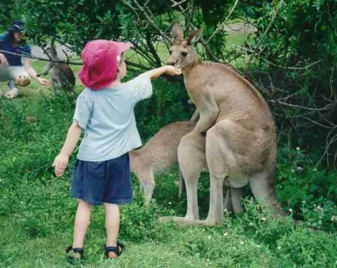 15 человек, которые запомнят свой поход в зоопарк навсегда