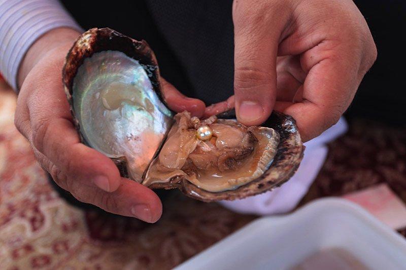 Жемчуг — единственный из ювелирных материалов, образующийся в теле моллюсков, и он же, возможно, оди