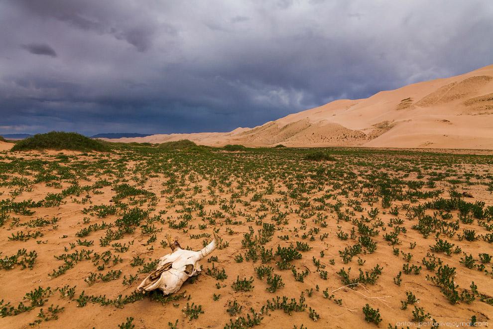3. Но когда ветер стих, можно было взять камеру и пойти снимать надвигающуюся бурю. Красивое, магиче
