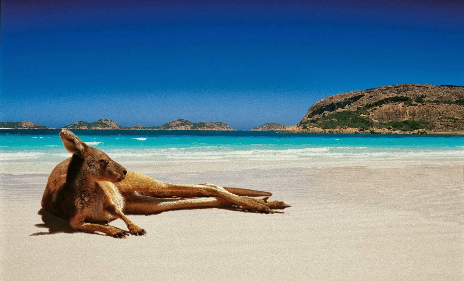 Отдых в Австралии