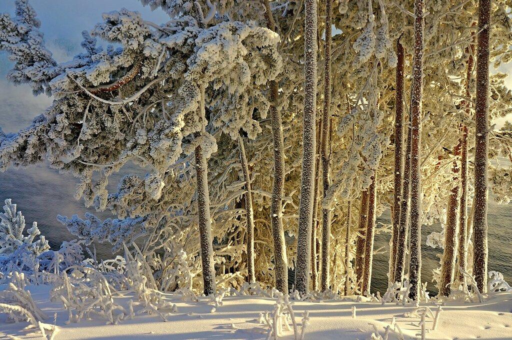 И снег,и иней, и мороз.jpg