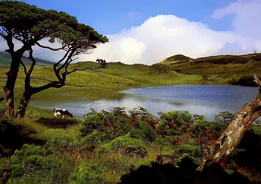 ILHA DO PICO - Lagoa do Capitão [1.jpg
