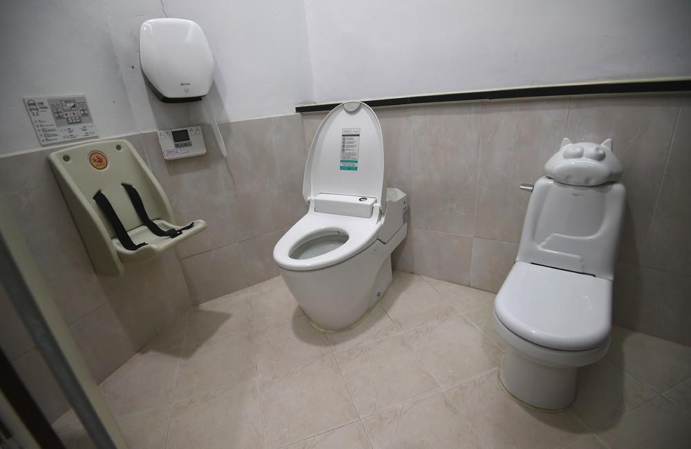 Всемирный день туалета 2017