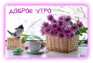 https://img-fotki.yandex.ru/get/914565/131884990.d6/0_15a200_71b55382_M.jpg