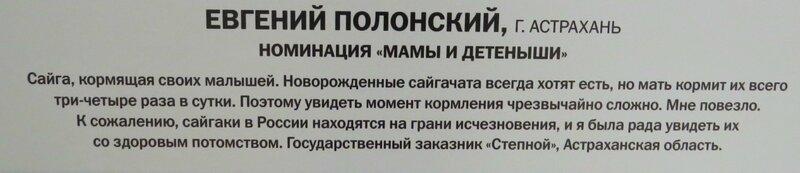 https://img-fotki.yandex.ru/get/914565/140132613.6a4/0_240928_ca8184ec_XL.jpg