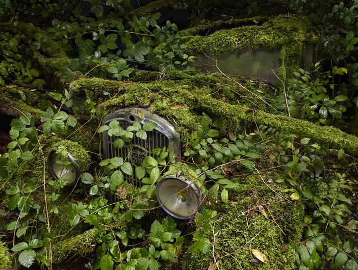 Еще несколько красивых фотографий  старых, заброшенных автомобилей от разных авторов