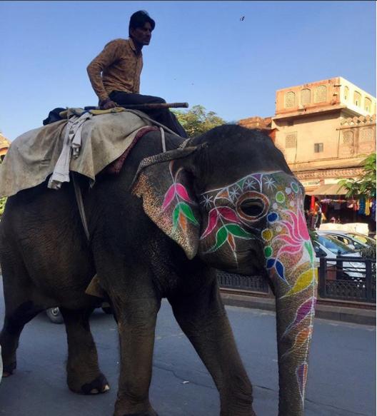 «Я в Индии: в этой стране уже ничего не исправить.  Я в любом другом месте: в моих венах течет