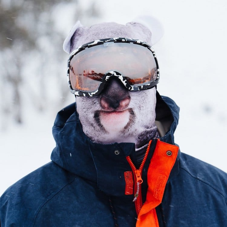 Компания предлагает лыжные маски с изображением разных видов животных, включая котов, лисиц, коал, х