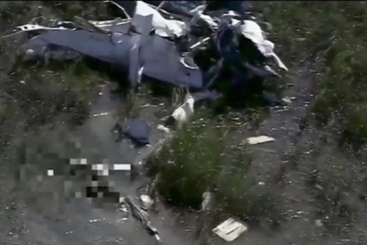 Аллигатор сожрал упавшего в болото летчика (1 фото)