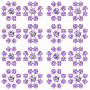 0_e1680_2b39b359_M.jpg