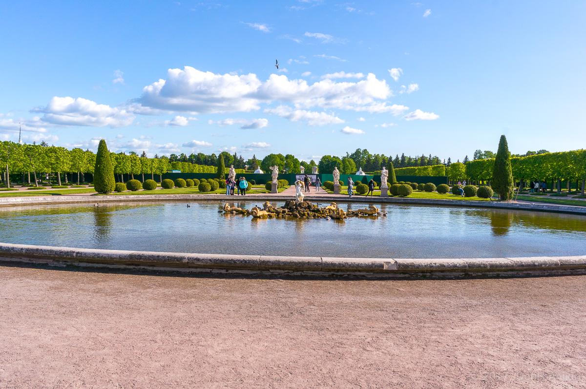 верхний сад петергоф фото 20