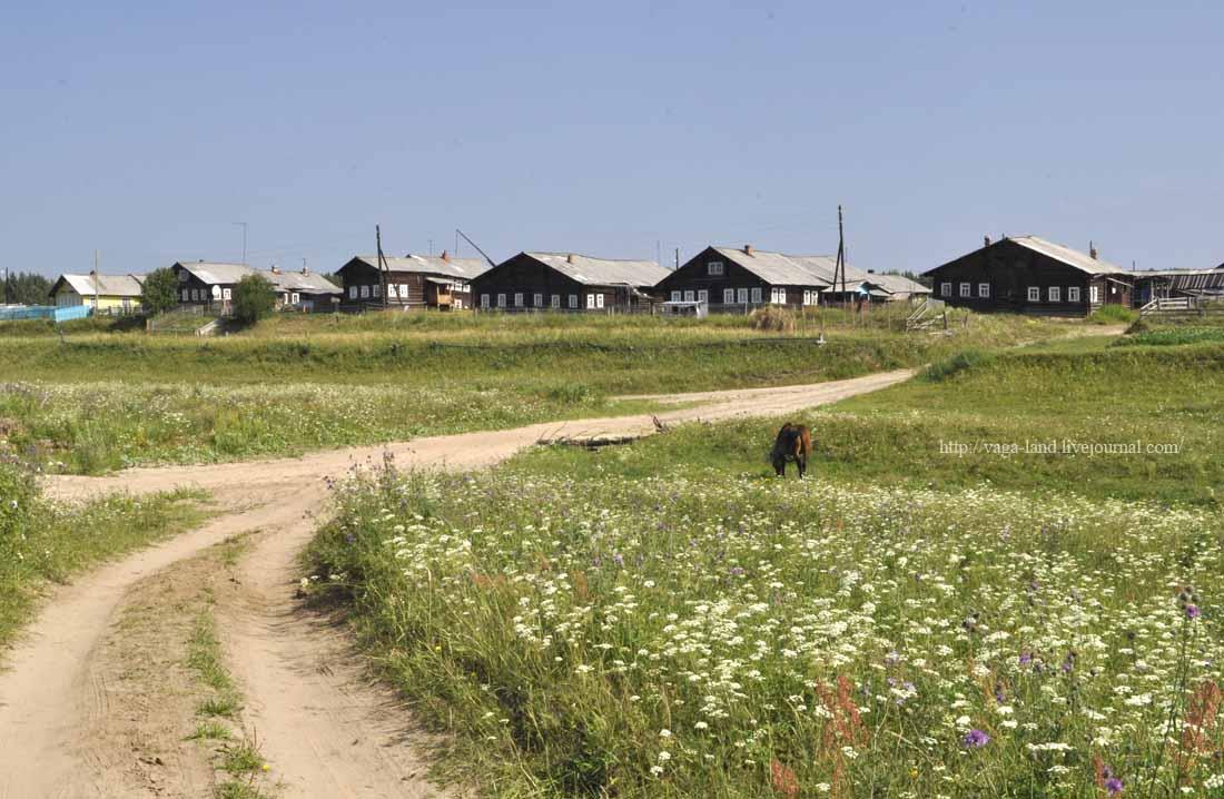 Деревня Остров 1100 вз.jpg