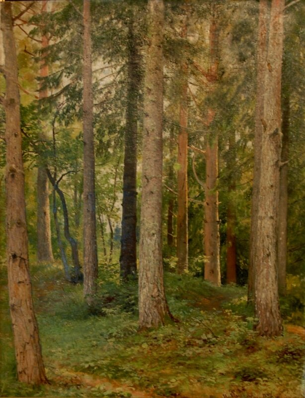 Шишкин И.И. «Лес. Ели». 1897. Из коллекции Вязниковского музея. УКРАДЕНА