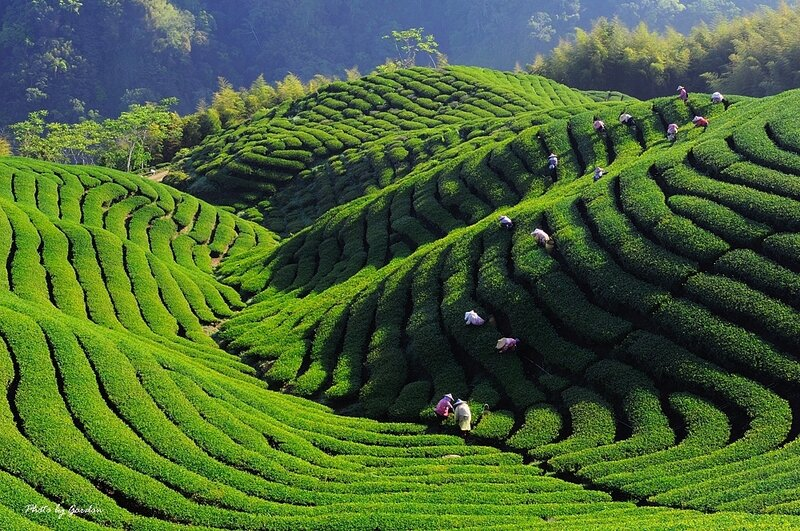 Вьетнам. Фотозарисовки