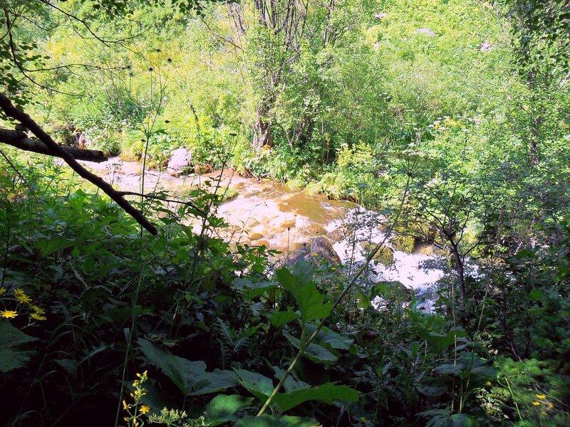 У вод, в окрестностях Мезмая